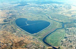 ハート型の湖、渡良瀬遊水地